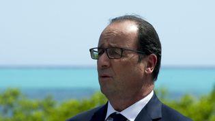 Le président français, François Hollande, le 17 novembre 2014 à Bourail (Nouvelle-Calédonie). (ALAIN JOCARD / AFP)