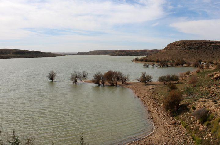 L'eau douce du lac de Wadi Kaam est d'abord destinée à l'irrigation. Le 2 février 2019. (AYMAN AL-SAHILI / REUTERS)