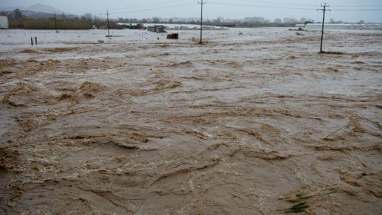 Un champ inondé après le passage de la tempête Gloria, le 22 janvier 2020, à Malgrat de Mar (Espagne). (JOSEP LAGO / AFP)