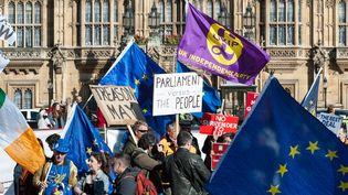 Des manifestants pro et anti-européens manifestent devant le Parlement, à Londres (Royaume-Uni), le 10 avril 2019.  (WIKTOR SZYMANOWICZ/NURPHOTO)