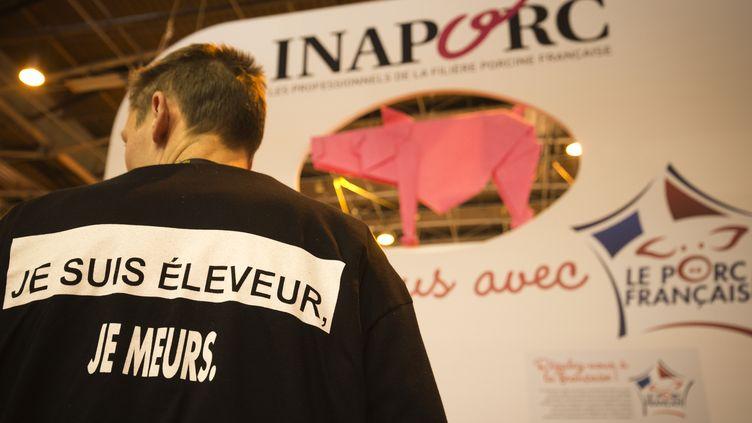 Un éleveur laitier au Salon de l'agriculture à Paris, le 27 février 2016. (JOEL SAGET / AFP)