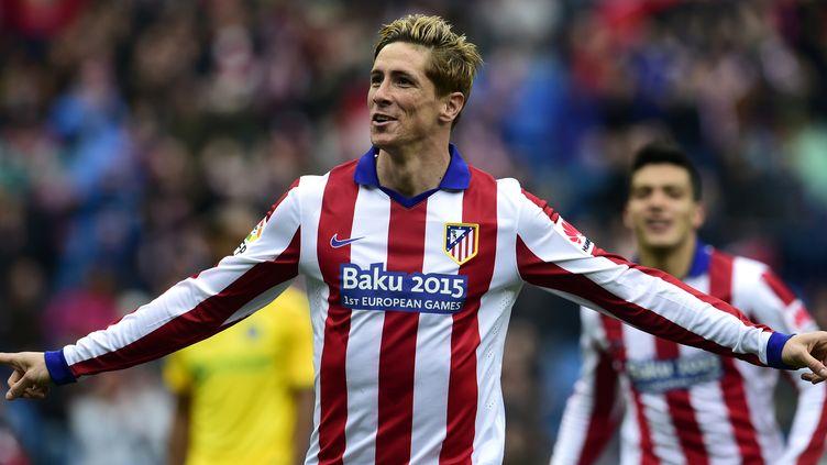 Fernando Torres (JAVIER SORIANO / AFP)