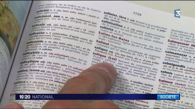 Dictionnaire : quels sont les nouveaux mots ?