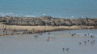 De nombreux pêcheurs à pied se sont retrouvés dans la baie de Saint-Brieuc (Côtes-d'Armor), à l'occasion de la marée du siècle, samedi 21 mars. (  MAXPPP)
