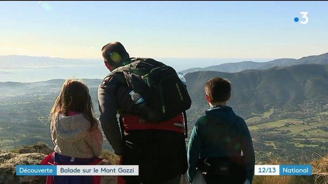 Découverte : balade en Corse, sur le Mont Gozzi