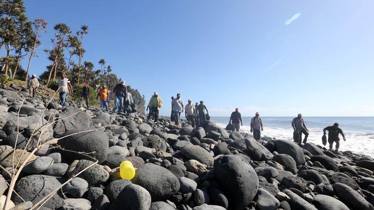 Des volontaires parcourent une plage de Sainte-Marie de La Réunion à la recherche d'éventuels débris de l'avion malaisien disparu. (RICHARD BOUHET / AFP)