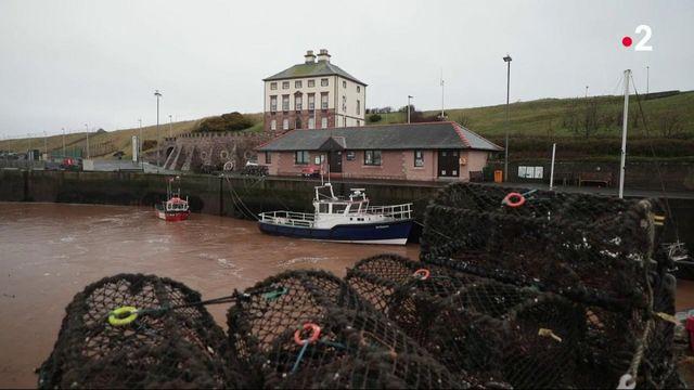 Brexit : le désarroi des pêcheurs écossais, privés du marché européen