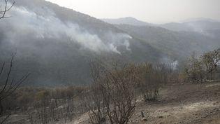 Une zone touchée par les incendies àTizi Ouzou, le 13 août 2021, en Algérie. (MOUSAAB ROUIBI / ANADOLU AGENCY / AFP)