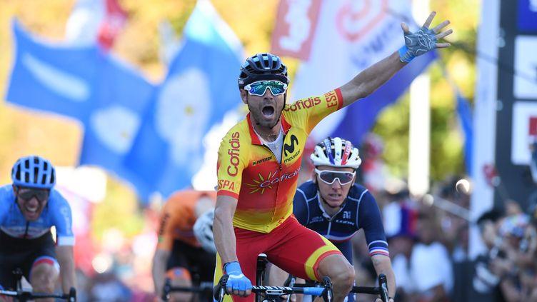 L'Espagnol Alejandro Valverde a remporté les championnats du monde de cyclisme sur oute à Innsbruck, en Autriche, samedi 30 septembre 2018. (CHRISTOF STACHE / AFP)