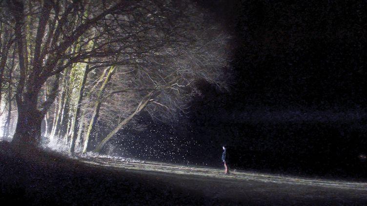 Les Particules, film de Blaise Harrison (Copyright Bande à part Films)