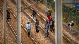 Des jeunes hommes pénètrent sur le site d'Eurotunnel pour tenter de franchir la Manche, en direction de l'Angleterre, depuis Calais (Pas-de-Calais), le 12 août 2015. (PHILIPPE HUGUEN / AFP)
