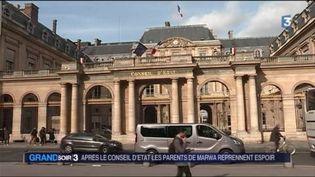 Le Conseil d'État s'est exprimé en faveur de la poursuite des soins pour Marwa. (FRANCE 3)