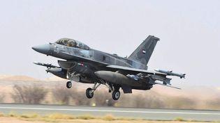 Un avion de la coalition arabe dirigée par l'Arabie saoudite, le 1er avril 2015. (WAM / AFP)