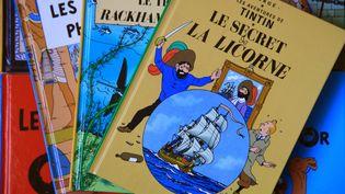 """Divers albums de """"Tintin"""". (MAXPPP  )"""