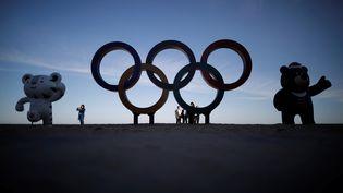 Les mascottes des Jeux olympiques et paralympiques d'hiver de Pyeongchang posent sur une plage à Gangneung (Corée du Sud), le 31 octobre 2017. (KIM HONG-JI / REUTERS)
