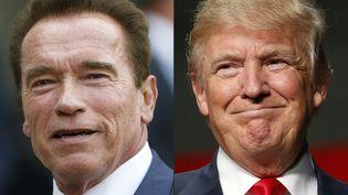 """Arnold Schwarzenegger a repris l'émission """"The Apprentice"""", autrefois présentée par Donald Trump. (THOMAS SAMSON / AFP)"""