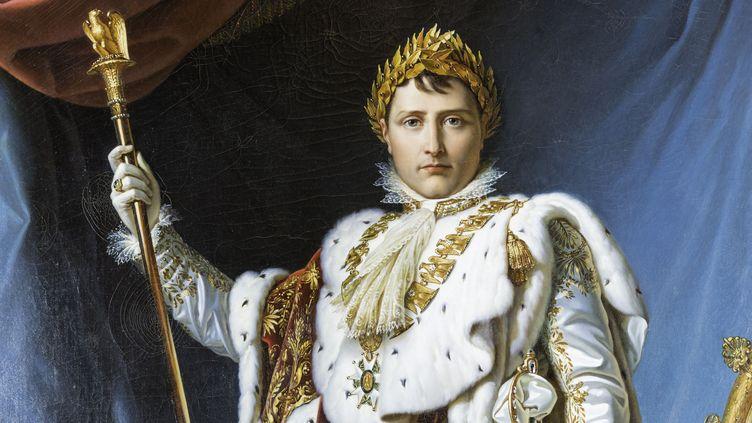 Napoléon Bonaparte, musée des Beaux Arts d'Ajaccio, par le baron François Gérard (LEMAIRE STEPHANE / HEMIS.FR)