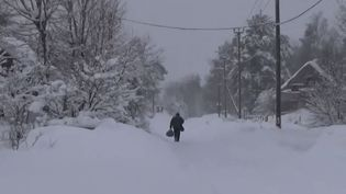 Dans la région de Saint-Pétersbourg, la vétusté du réseau ajoutée aux conditions climatiques extrêmes a conduit à une coupure d'électricité depuis six semaines. (FRANCE 2)