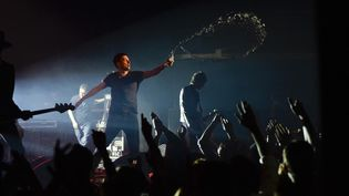 Damon Albarn au Casino de Paris, novembre 2014.  (Nathalie Guyon / FTV)