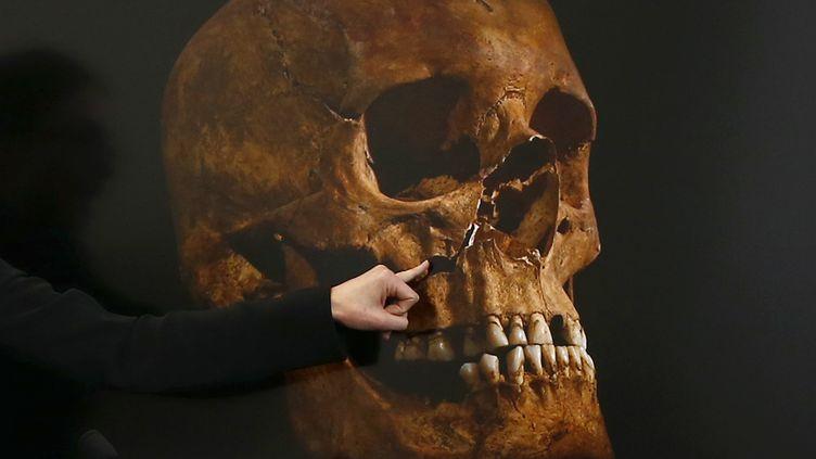 Une image du crâne de Richard III diffusée lors de la conférence de presse des experts qui ont identifié son squelette, à Leicester (Royaume-Uni), le 4 février 2013. (DARREN STAPLES / REUTERS)