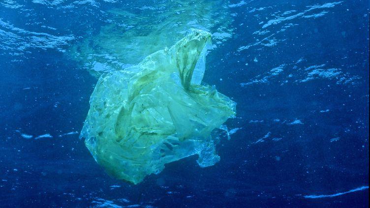 Au large de l'océan Pacifique, les courants regroupent les déchets en plastique dans une zone qui fait six fois la taille de la France. (ODILE GAUTIER / BIOSPHOTO)