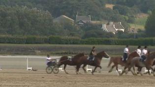 Des chevaux de trait participent sur des courses sur la plage à Plouesat (Finistère), en Bretagne. (France 2)