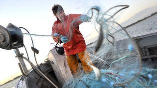 Scarlette le Corre, marin pêcheur sur le pont (FRED TANNEAU / AFP)