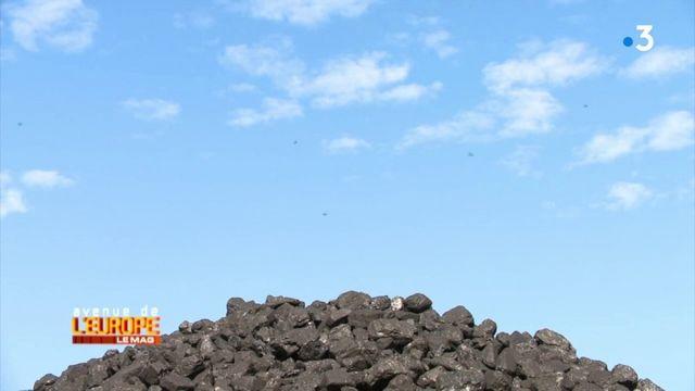 Avenue de l'Europe/ Pologne : charbon mon amour