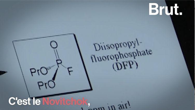 VIDEO. L'histoire du Novitchok, probable responsable de l'empoisonnement d'Alexeï Navalny (BRUT)