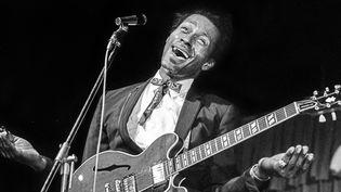 Chuck Berry, légende du rock.  (Jacob Forsell / EXP / TT NEWS AGENCY / TT News Agency/AFP)