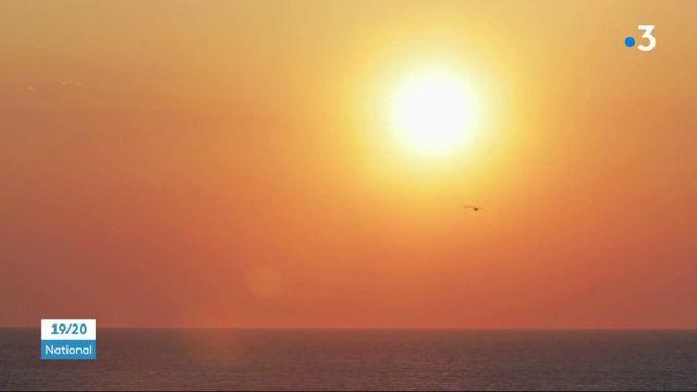 Île de Groix : l'unique conserverie de l'île fête ses 20 ans