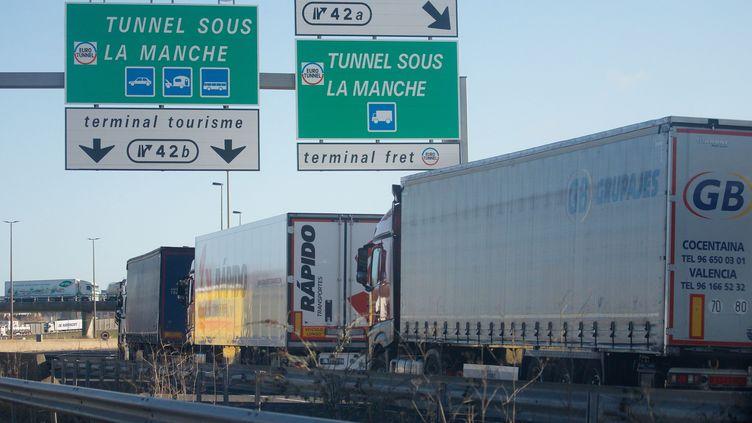 File de camions sur l'A16 à Calais, le 5 mars 2019 (illustration). (JOHAN BEN AZZOUZ / MAXPPP)