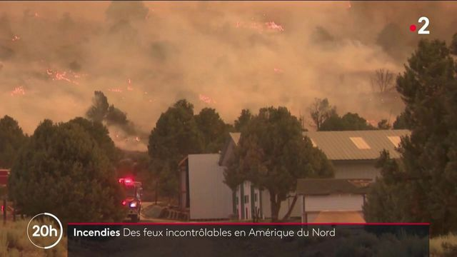 Incendies : l'Amérique du Nord sous les flammes
