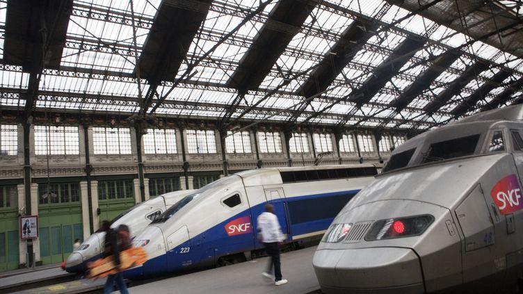 Le 31 mai 2013, Céline, une femme trans, a été verbalisée dans un TGV Lyon-Paris carson patronyme ne corrrespondait pas à son apparence. (LOIC VENANCE / AFP)