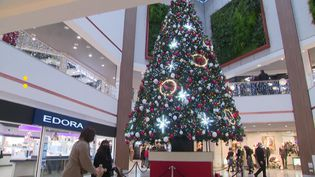 Un sapin géant trône dans un centre commercial dans le Cher. (France Télévisions)