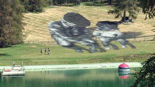 Oeuvre de l'artiste Saype à Valberg dans les Alpes-Maritimes (France 3 AURA)