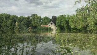 La forêt domaniale d'Ermenonville, dans l'Oise, a attiré de nombreux écrivains qui venaient de Paris pour s'y ressourcer. Le 13 Heures de France 2 vous fait découvrir ses trésors historiques. (FRANCE 2)