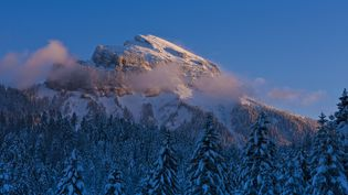 Les Alpes (MONTICO LIONEL / HEMIS.FR / AFP)
