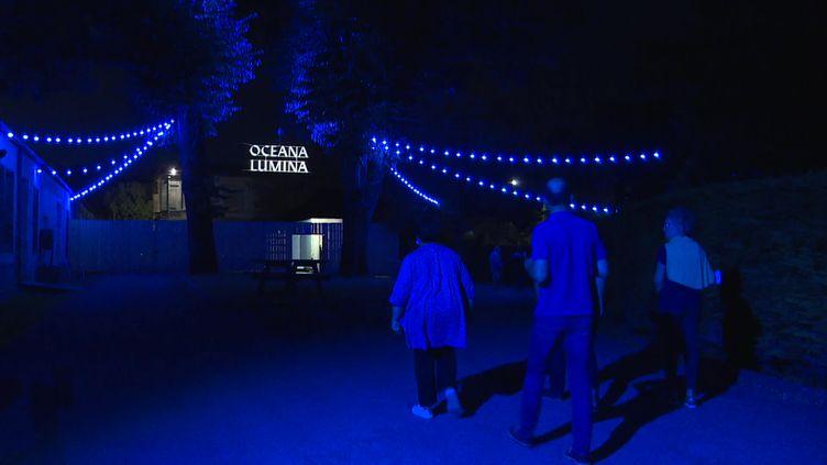 Le parcours nocturne Oceana Lumina à Rochefort. (FRANCEINFO)