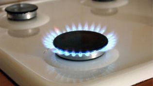 """Le 1er novembre 2016, le prix du gaz augmente """"de 0,5% pour les foyers qui utilisent le gaz uniquement pour la cuisson"""", selon le régulateur de l'énergie. (MAXPPP)"""