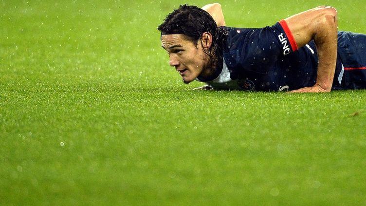 L'attaquant du Paris Saint-Germain Edinson Cavani lors d'un match au Parc des Princes, le 1er novembre 2013. (LIONEL BONAVENTURE / AFP)