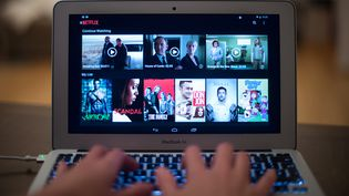 La plateforme de streamingNetflix, en septembre 2014. (BERND VON JUTRCZENKA / DPA / AFP)