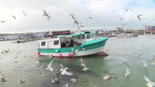 Inquiétude des pêcheurs français face aux conséquences du Brexit. (France 3 Nord Pas-de-Calais / F. Bellouti)