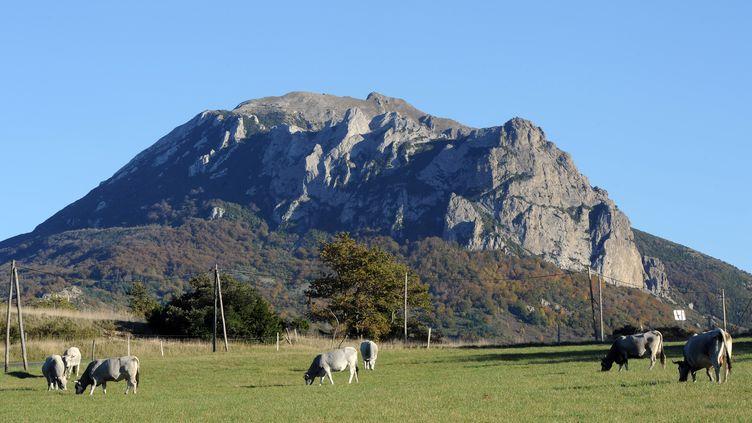 Le pic de Bugarach (Aude), le 7 novembre 2012. (ERIC CABANIS / AFP)