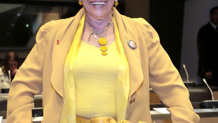 La députée socialiste Danièle Hoffman-Rispal, le 28 mai 2013, à l'Assemblée nationale. (JACQUES DEMARTHON / AFP)