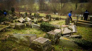 Des policiers réalisent des relevés dans le cimetière juif profané de Sarre-Union (Bas-Rhin), le 16 février 2015. (CITIZENSIDE / CLAUDE  TRUONG-NGOC / AFP)