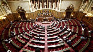 L'hémicycle du Sénat, le 13 juin 2016. (DENIS ALLARD / REA)