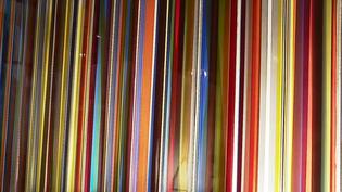 """Exposition""""Images et Lumières"""" au Centre international du vitrail, à Chartres  (Capture d'écran France 3 / Culturebox )"""