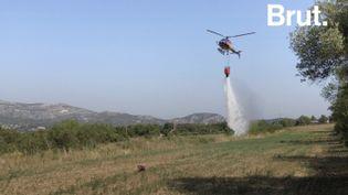 VIDEO. Dans les Bouches-du-Rhône, l'organisation imparable des pompiers pour contrer les feux de forêt (BRUT)