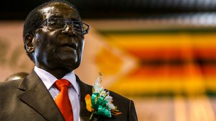 Robert Mugabe lors d'un meeting à Harare auZimbabwe, le 7 avril 2016. (JEKESAI NJIKIZANA / AFP)